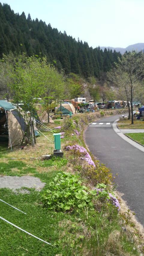 根尾でキャンプ