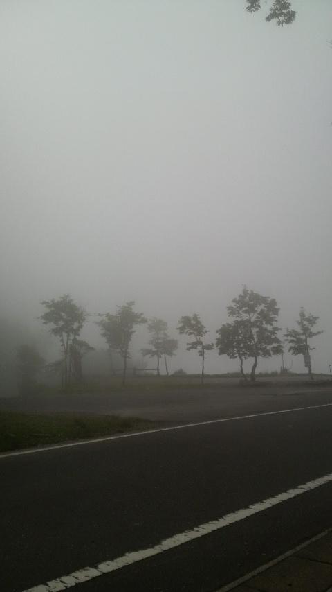本日の池田山頂